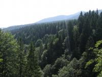 Поднявшись в горы над лесами